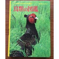 小学生時代「小学館の学習百科図鑑」黄色い背表紙