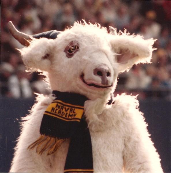 bill_the_goat