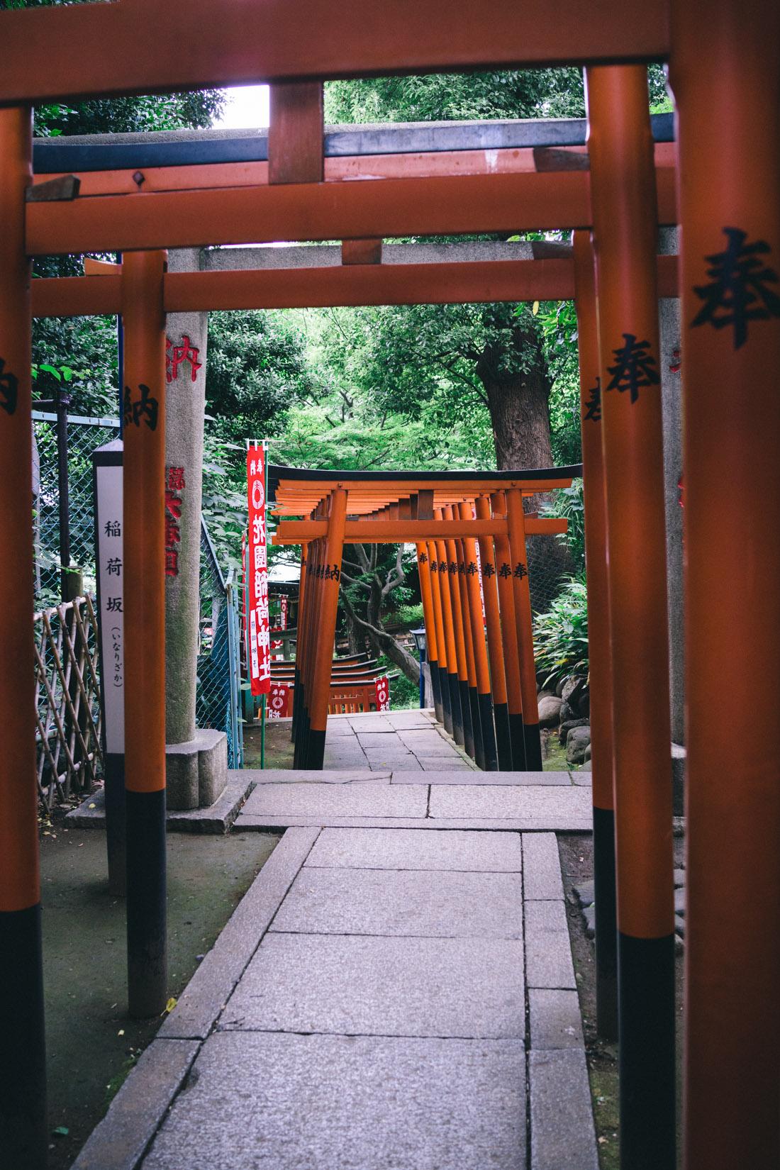Tori to Hanazono Inari shrine.