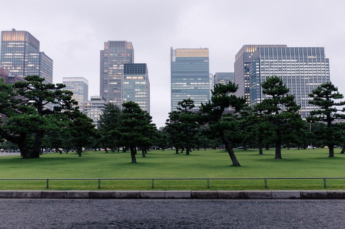 Very zen-like garden near the Imperial Palace.
