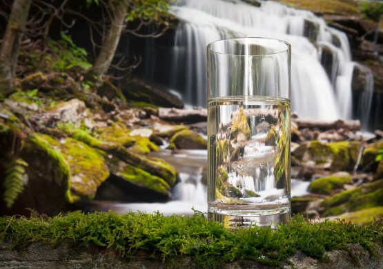 Image result for drinking water nature