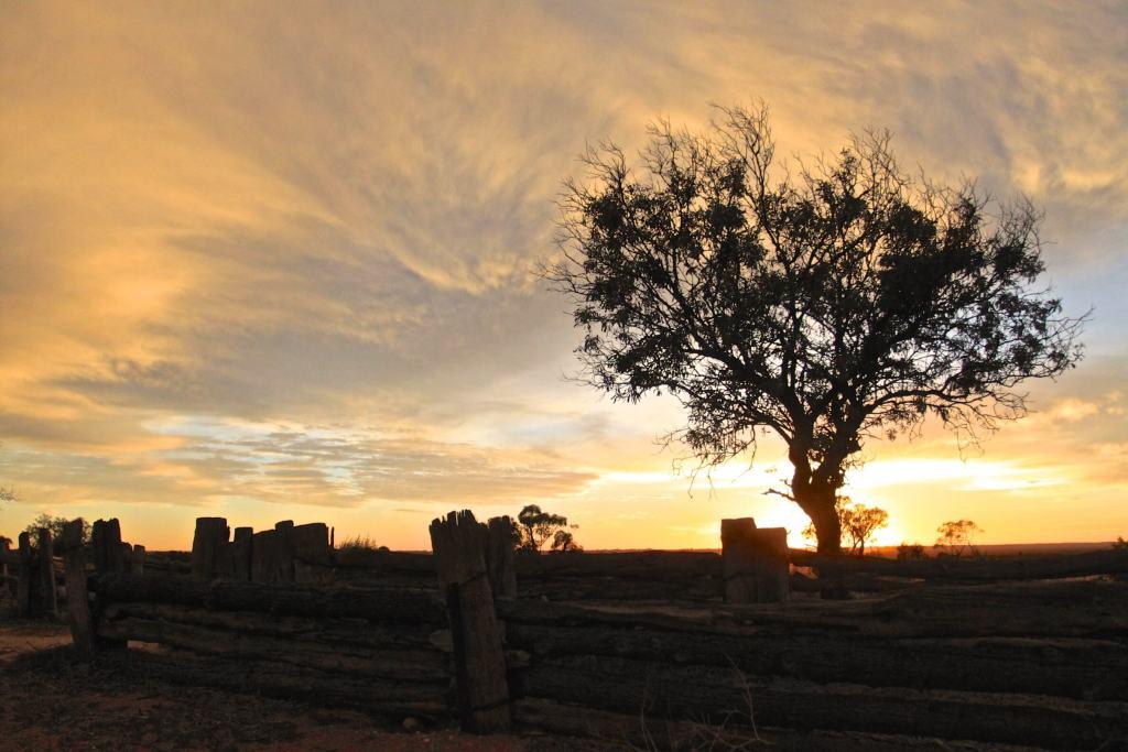 Morning Light, Mungo National ParkBuy Now