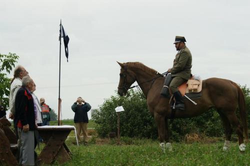 Raport z konia DU
