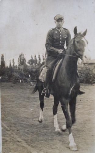 jankrzewinski