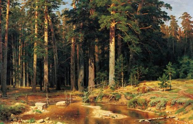 shishkin_wood