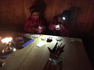 Sina og Oline spiller kort