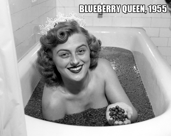 Miss Blueberry, 1955