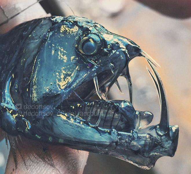 Deep sea monster.