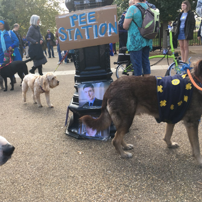 Brexit pee station.