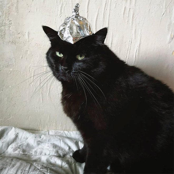 Tin foil hat protects from mind control!