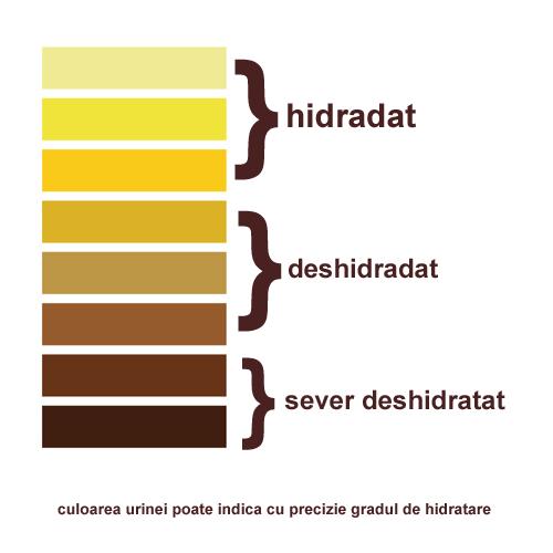 hidratare-grad