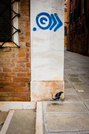 Venezia by 1Chapter Photography-16