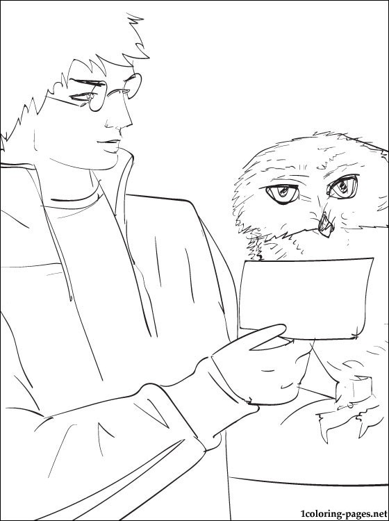 harry potter coloring page furthermore snowy owl coloring pages also