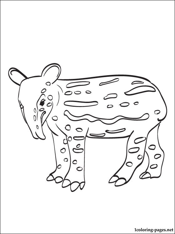 Tapir Coloring Page For Free Coloring Pages