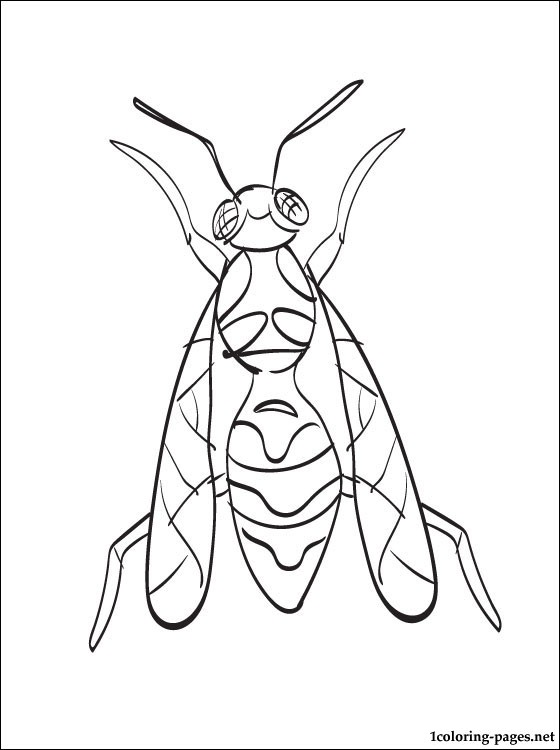 Wasp Coloring Page For Free Coloring Pages