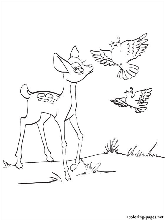 Bambi With A Partridges Pencil Drawing For Coloring