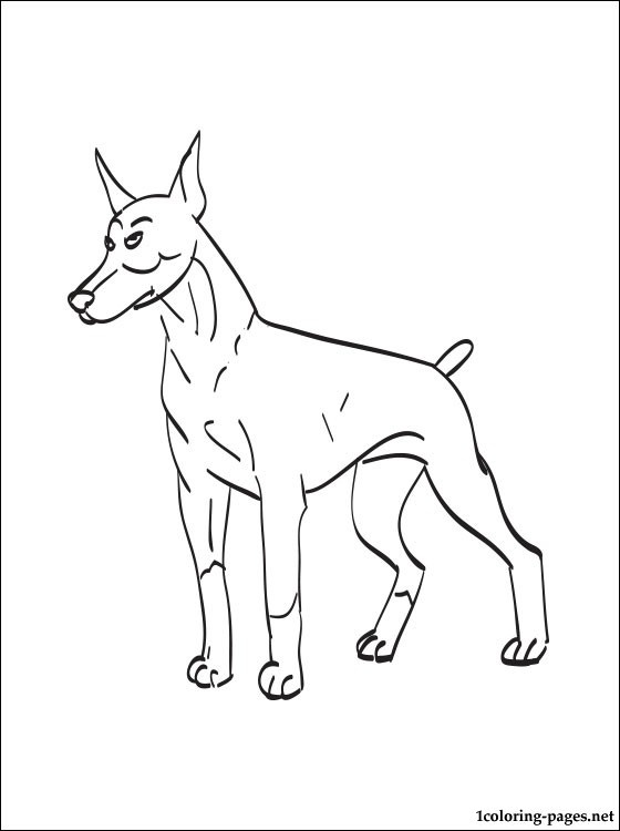 Doberman Pinscher Coloring Page Coloring Pages