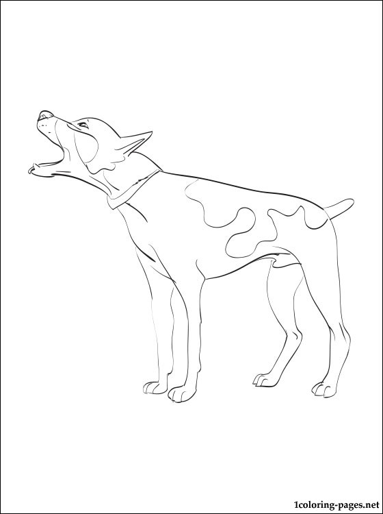 Rat terrier coloring page coloring pages, love coloring page