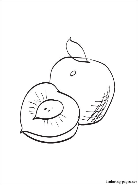 Nectarine Coloring Page For Kids Coloring Pages