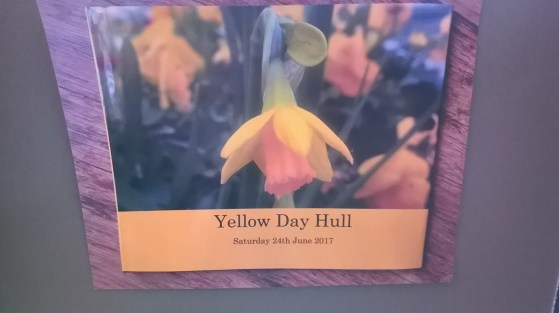 1create - yellow day revisited display 11