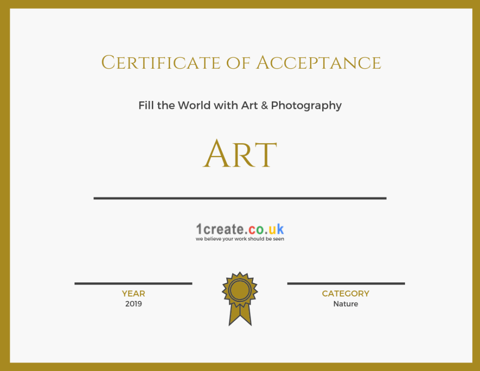 1create - Certificate of Acceptance - Fill the World with Art & Photography