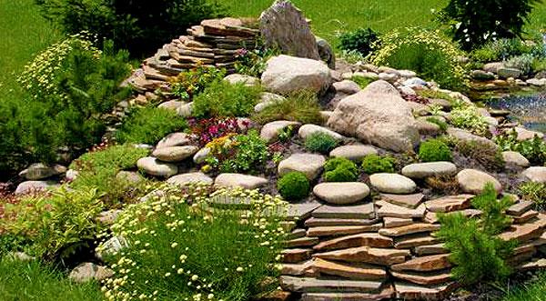 Слоистые камни в альпийской горке