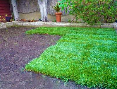 Подготовка места перед укладкой рулонного газона