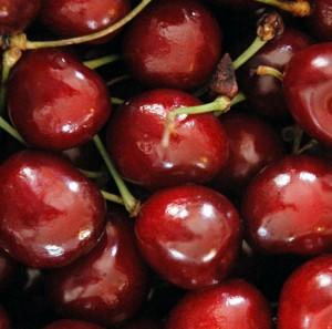 ягоды черешни