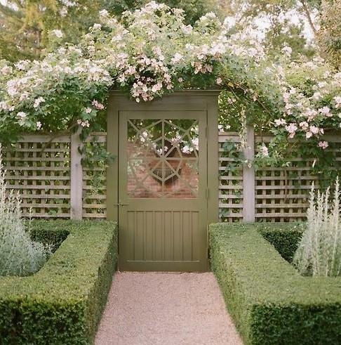 Красивая живая ограда