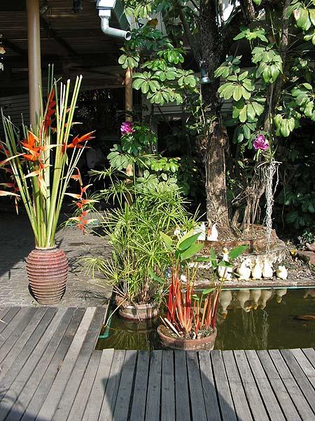 дизайн садового пруда фото