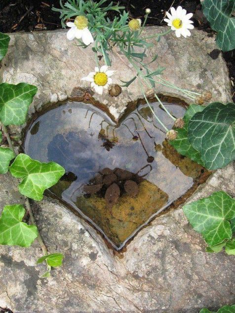 Пруд в форме сердца