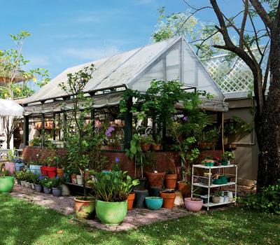 новые идеи для сада и огорода 7