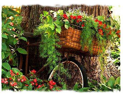 Клумба велосипед в саду