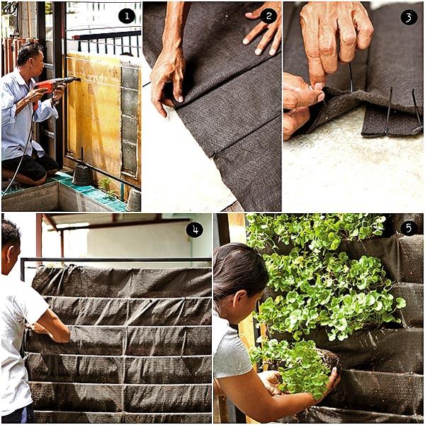 озеленение стены мастер класс