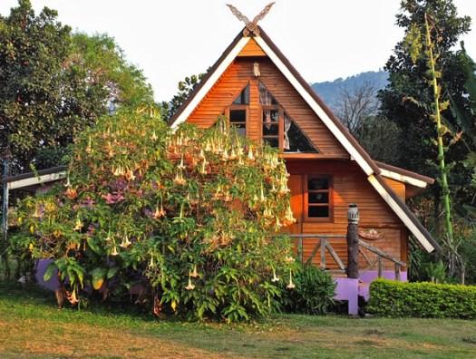 деревянный дачный домик - идея с высокой крышей