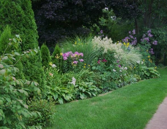 красивые уголки сада - миксбордер из многолетников