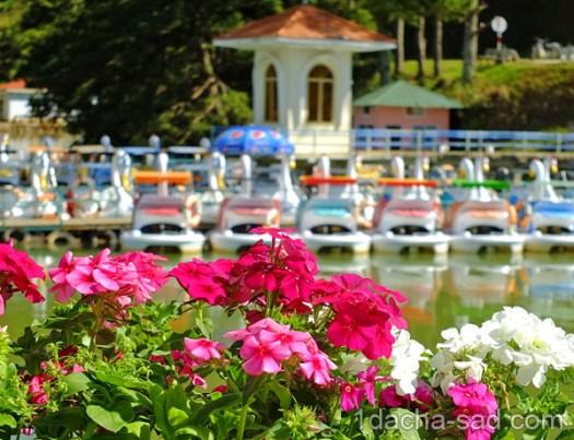 парк долина любви далат вьетнам (14)