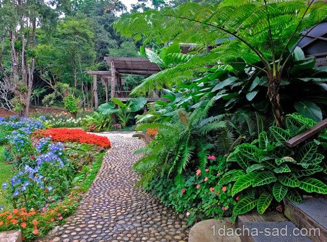 красивый сад Mae Fah Luang (9)
