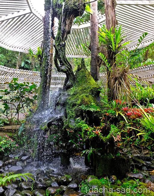 красивый сад Mae Fah Luang (17)