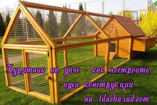 Как построить курятник на даче