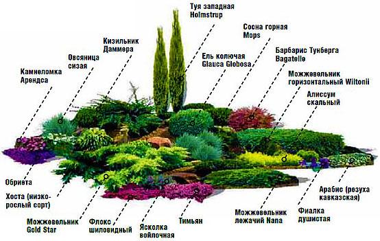 Автополив газона