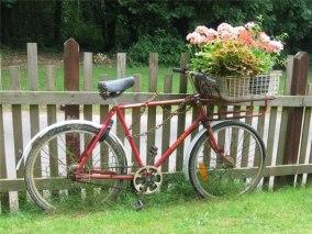 Старый велосипед с цветами у забора