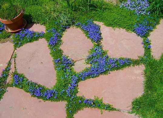 Альтернатива мощению - каменные плиты