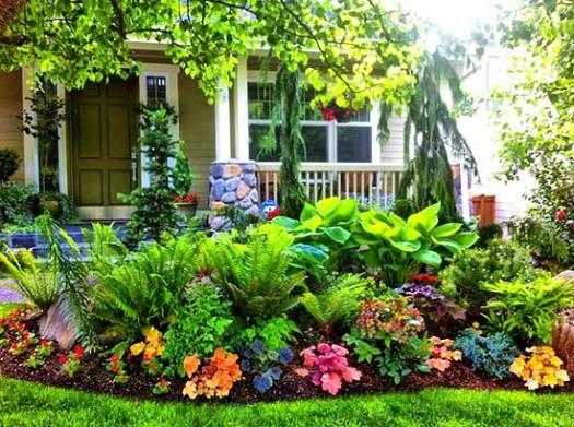 Красивый цветник своими руками возле дома