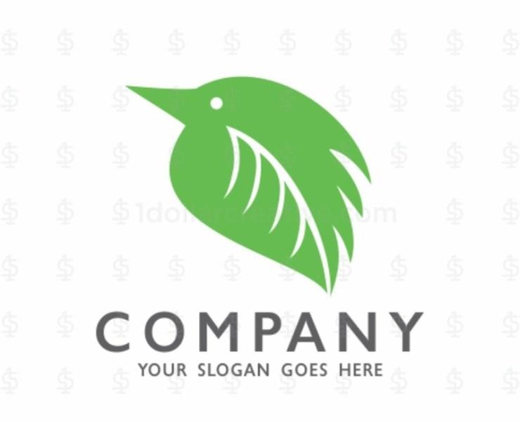 Eco Bird Logo Template