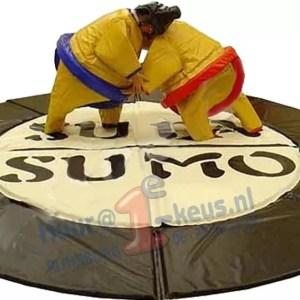 Huur Sumoworstellen, een leuke em goedkope attractie