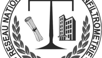 Logo RNEI