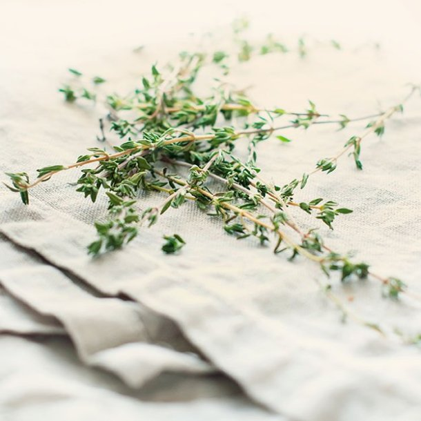 DIY How to Dry Herbs Intro