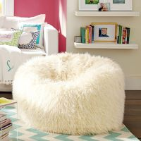Product of the day - Furlicious Beanbag by PB Teen