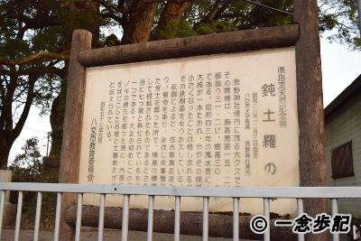 県指定天然記念物「鈍土羅のクス」案内板